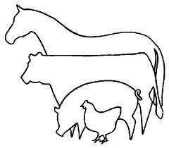 horsevs
